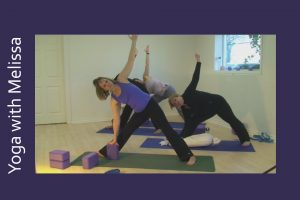 Post image for Yoga with Melissa 18: Facing our Fears in Winter with Dr. Melissa West
