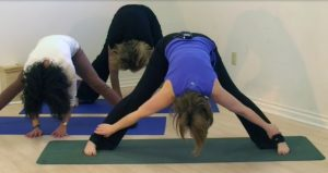Post image for Yoga with Melissa Episode 21: Kidney and Bladder Meridians with Dr Melissa West