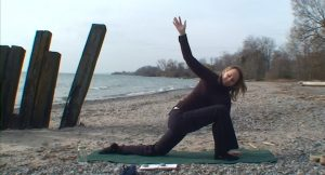 Post image for Yoga with Melissa 60: Your Organ Body: Heart and Lungs