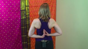 Post image for Yoga with Melissa 78 Karma with Dr. Melissa West