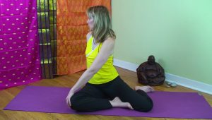 Post image for Yoga with Melissa 79 : Dharma with Dr. Melissa West