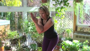 Post image for Yoga with Melissa 108 Vishnu Series: Garudasana or Eagle