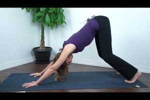 beginner yoga how to do downward facing dog yoga with