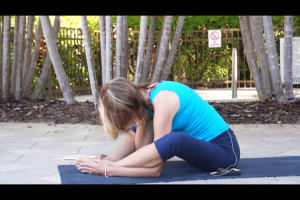 Post image for Yoga with Melissa 160 Wildlife of Florida: Dolphin, Alligator and Tortoise Pose Intermediate Yoga