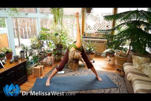 Post image for Yoga with Melissa 168 Compassion in Action, Lakshmi Series, Elephant Lakshmi