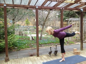 Post image for Yoga with Melissa 174: Desensitized to Violence