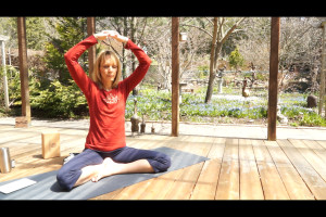 """Post image for Yoga with Melissa 175 Cultural Conditioning Series """"Forever Young"""" a Chakra Balancing Class"""