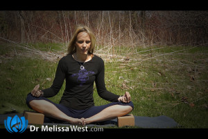 Post image for Fear of Failure: A 50-Minute Intermediate to Advanced Hatha Yoga Class: Yoga with Melissa 176
