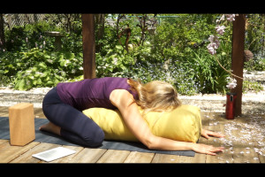 Post image for Free Restorative Yoga Videos