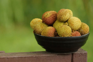 Post image for Lychee-licous Juice!