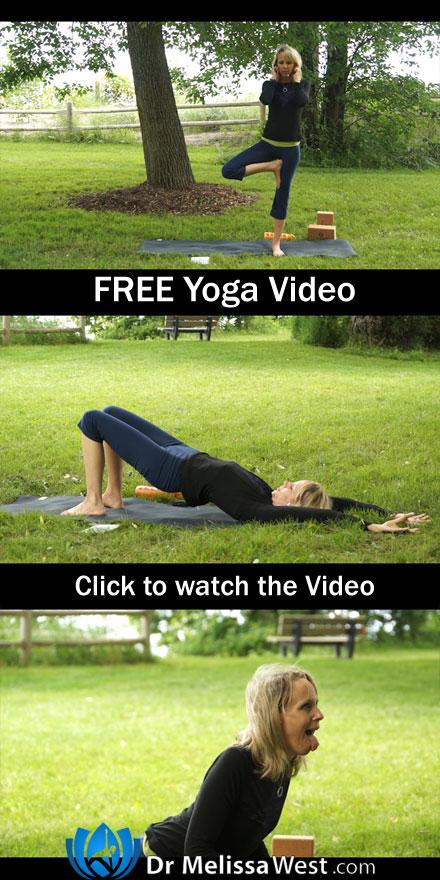 Namaste-Yoga-186---FREE-Yoga-Class-Video