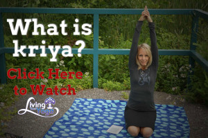 Post image for What is a kriya?