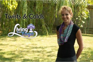 Post image for Twists and Colds for Yoga Detox