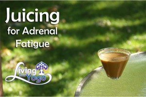 Post image for Juicing for Adrenal Fatigue