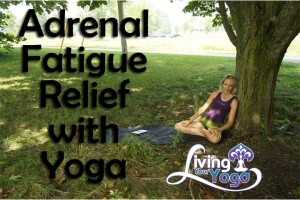 Post image for Relief from Adrenal Fatigue