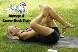 Post image for Yoga for lower back and kidneys