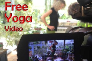 Post image for Yoga with Melissa 201, Yoga for Your Nervous System, Benefits of Yoga Series