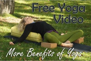Post image for Yoga for Hormonal Balance and Endocrine System, Benefits of Yoga Series, Yoga with Melissa 199