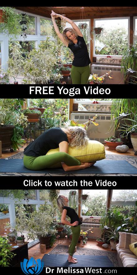 Namaste-Yoga-201