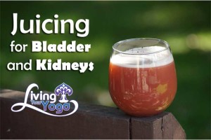 Post image for Juicing for Bladder and Kidneys