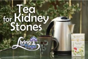 Post image for Herbal Tea for Kidney Stones