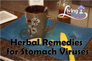 Post image for Herbal Remedies for Stomach Viruses