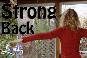 Post image for Use your strong back