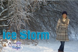 Post image for Ice Storm 2013