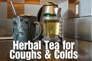 Post image for Herbal Tea for Coughs and Colds