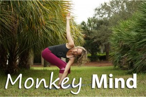 Post image for Yoga with Melissa 211, How to Tame Your Monkey Mind, Hanuman Series
