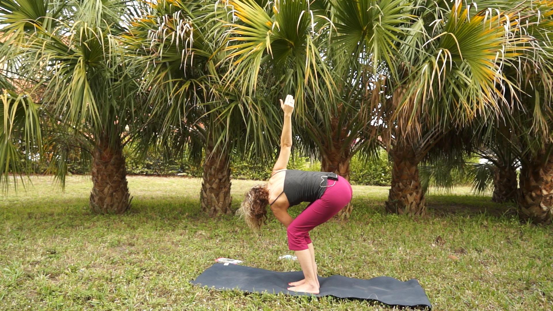 Prasarita Padottanasana Twist Namaste Yoga 211 Hanum...