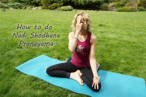 Post image for Yoga with Melissa 227, Fourth Limb of Yoga: Pranayama, Eight Limbs of Yoga, How to do Nadi Shodhana Pranayama, 1 hour Yoga Class