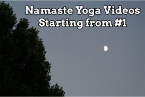 Post image for Namaste Yoga Videos Starting from Number One