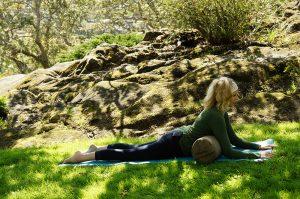 Post image for Yoga with Dr. Melissa West 247 | Natarajasana/Dancer Pose | Chest Opener Yoga | 50 min Intermediate Hatha Yoga Class