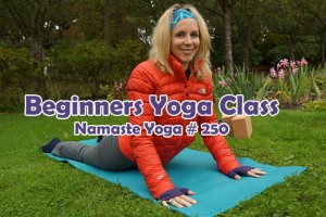 Post image for Namaste Yoga 250 Beginner Yoga: Intention