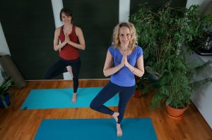 Post image for Yoga for Beginners   Beginner Yoga: Absolute Beginner 1 hour   Yoga with Dr. Melissa West 268