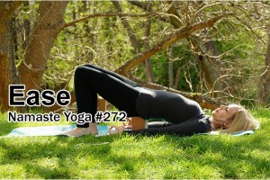 Post image for Namaste Yoga 272 Easy to Follow Beginner Yoga