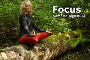 Post image for Namaste Yoga 274 Beginner Yoga Focus