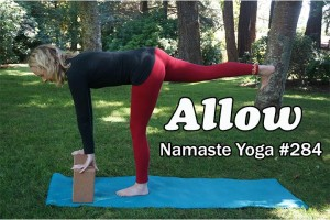 Post image for Namaste Yoga 284 Yoga with Two Blocks:  An Intermediate Yoga Master Class