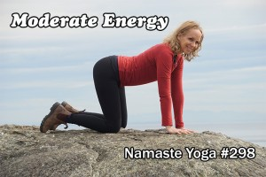 Post image for Namaste Yoga 298 Focused Living Series: Disciplined Moderation of Energy An Intermediate Level Yoga Class