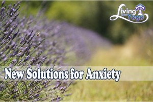 Post image for New Solutions for Anxiety