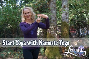 Post image for Start Yoga with Namaste Yoga