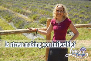 Post image for Is stress making you inflexible?