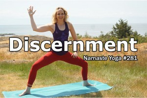Post image for Namaste Yoga 281 Discernment and your Inner Critic an Intermediate Yoga Class