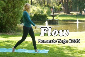 Post image for Namaste Yoga 283 Flowing with Your Inner Critic an Intermediate Yoga Class