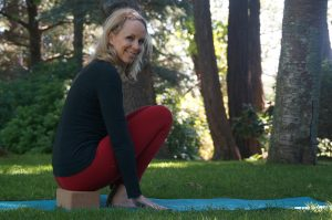 Post image for Yoga Blocks | 65 min Intermediate Hatha Yoga Class | Yoga with Dr. Melissa West 284