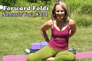 Post image for Yoga Melissa 134 Beginners Yoga Forward Folds