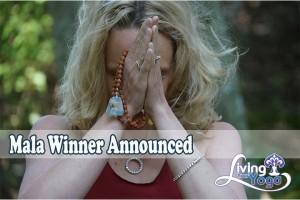 Post image for Mala Winner Announced
