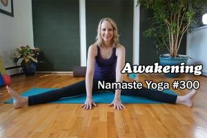 Post image for Namaste Yoga 300: The Journey of Awakening
