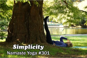Post image for Namaste Yoga 301 Focused Living Saucha, Simplicity and Continual Refinement